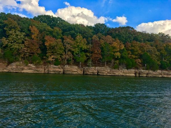 2016-10-17-cliffs-leaves