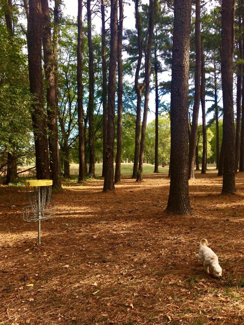 2016-10-25-frisbee-golf