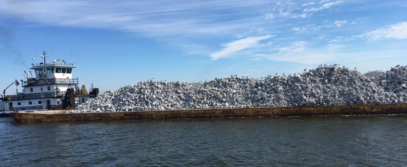 2016-11-12-barge-birds