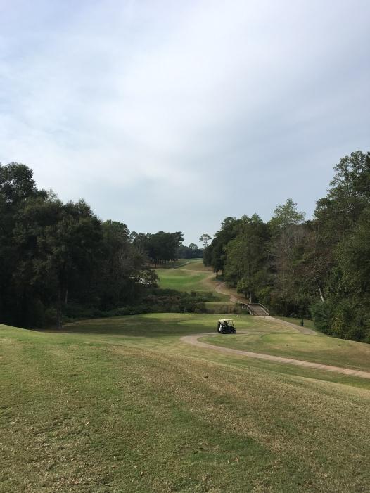 2016-11-14-golf