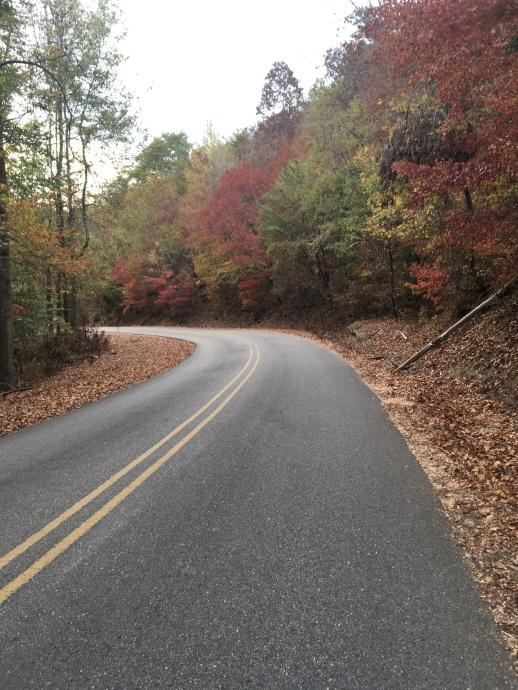 2016-11-5-walk-down-road-to-marina-fall
