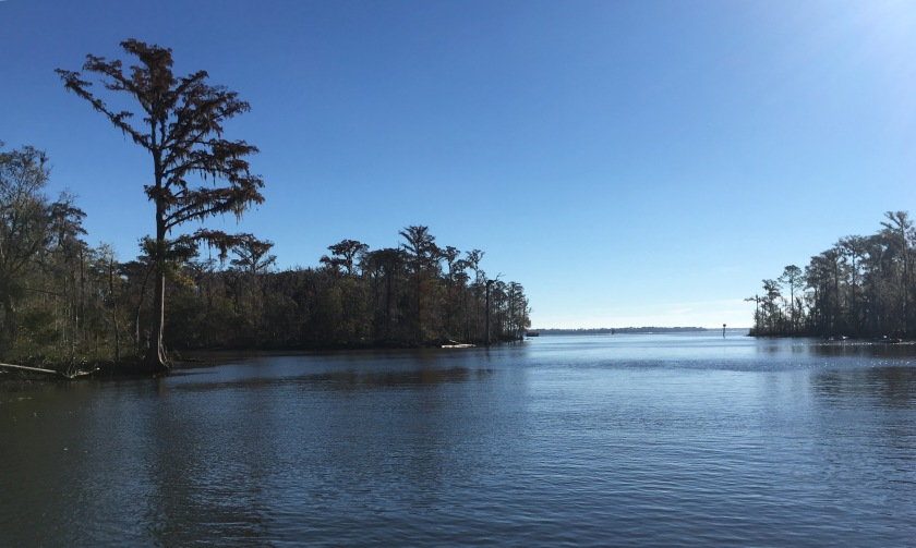 2016-12-10-heading-out-to-bay