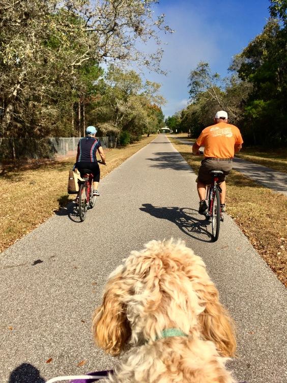 2016-12-14-biking-pinellas-trail