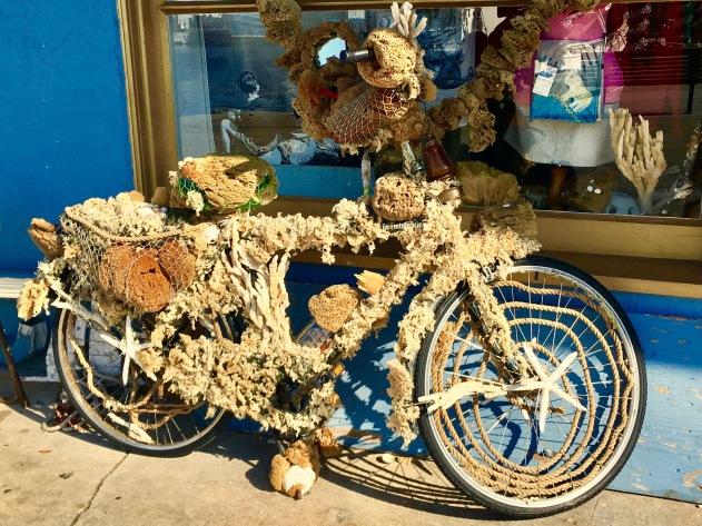 2016-12-14-sponge-bike