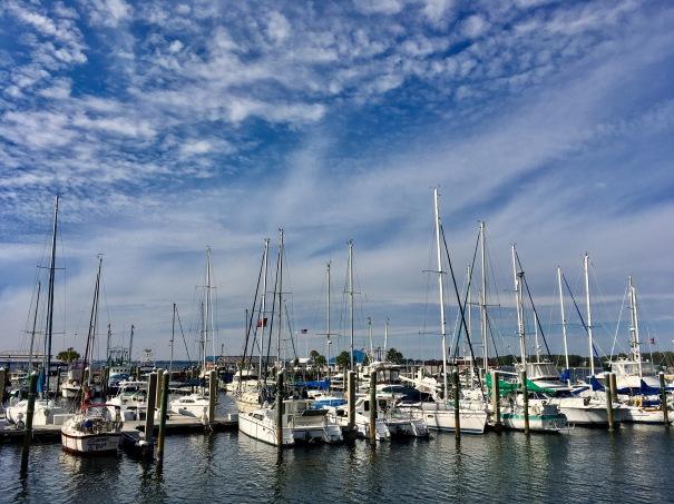 2016-12-8-st-andrews-marina