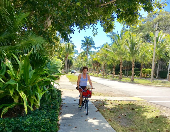 2017-1-16-b-z-bike-classic-florida