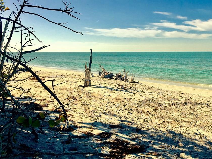 2017-1-16-san-pedro-morning-beach