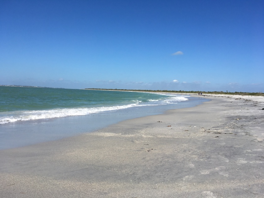 2017-1-24-gulf-side-beach