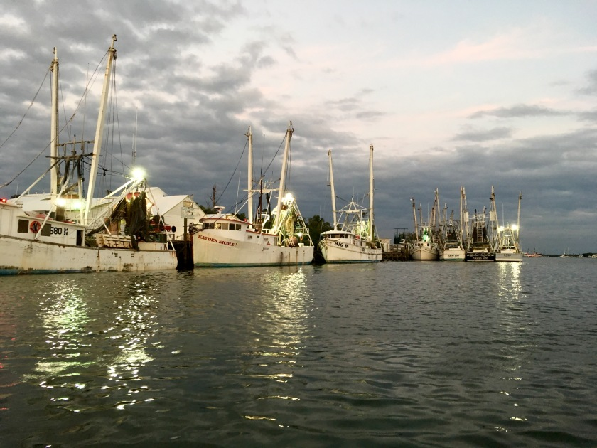 2017-1-28-evening-harbor-shrimp