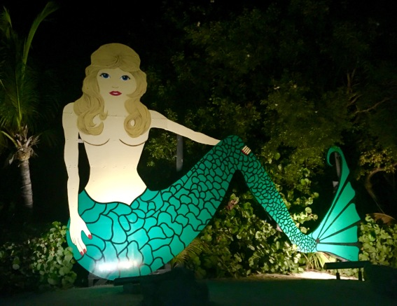 2017-3-12 mermaid