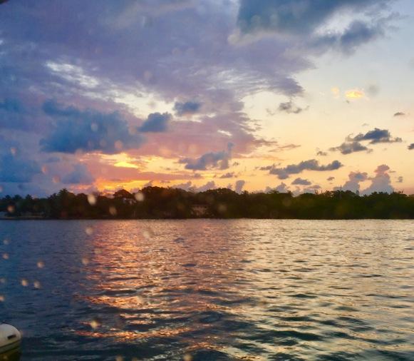 2017-3-12 morning sunrise raindrops