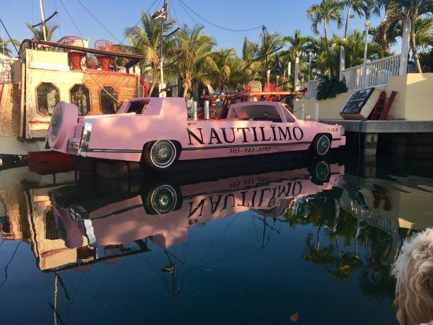 2017-3-12 pink cad