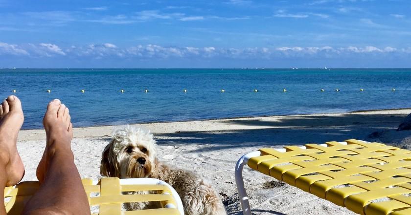 2017-3-17 sitting beach