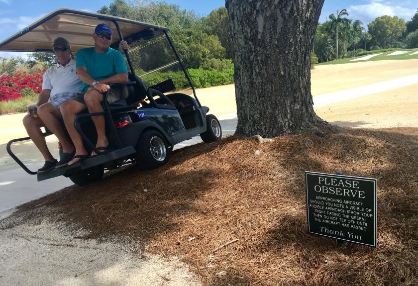 2017-3-8 golf cart