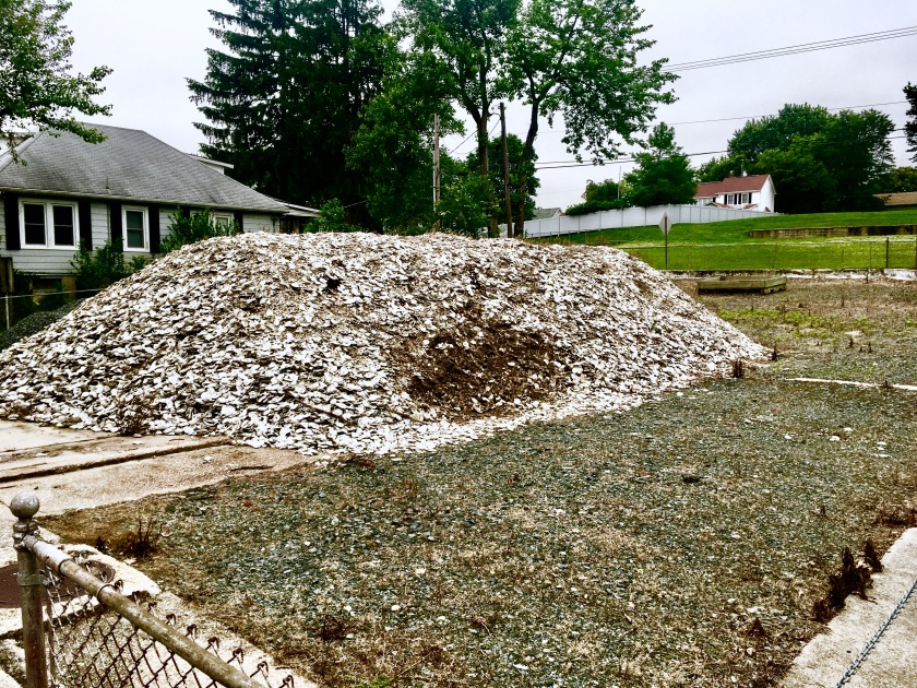 2017-5-30 au naturel landfill oyster