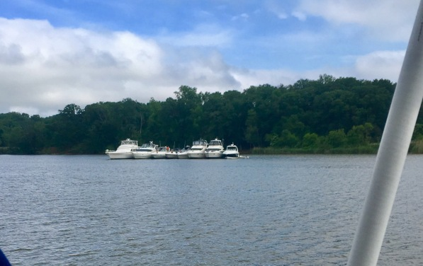 2017-5-30 rafting up