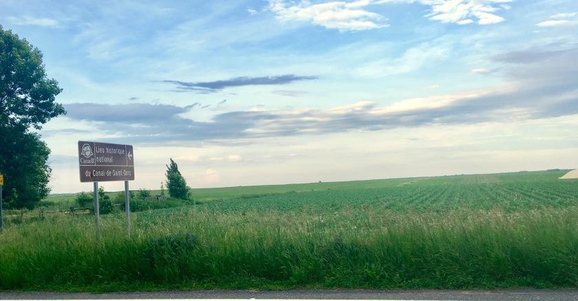 2017-6-21 cornfields