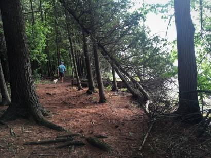 6-13 trail