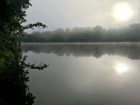 6-6 mist