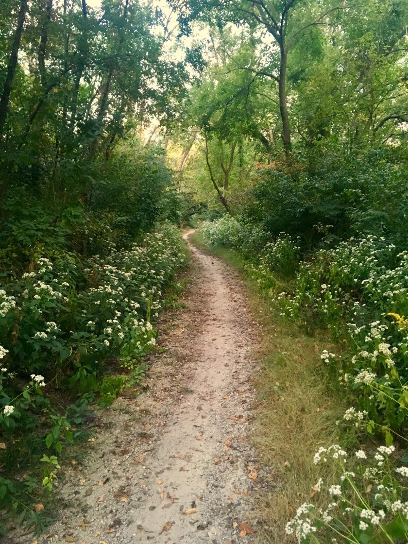2017-9-19 ottawa lock trail