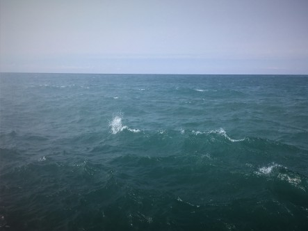9-8 wave